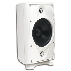 AccentPLUS1 White Stereo Outdoor Speaker 6.5 inches with Dual Fixed Tweeter (Single)
