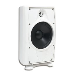 AccentPLUS1 White Outdoor Speaker 8.0 inches with Fixed Tweeter (Pair)