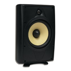 AccentPLUS2 Black Outdoor Speaker 8.0 inches with Fixed Tweeter (Pair)