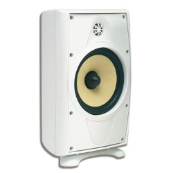 AccentPLUS2 White Outdoor Speaker 8.0 inches with Fixed Tweeter (Pair)