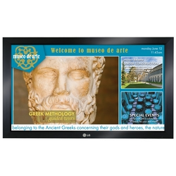 52 inches Professional LCD Display