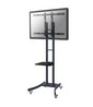 NewStar LCD/LED/Plasma floor stand